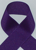 Schiff Deep Purple Grosgrain Ribbon
