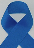 Schiff Blue Magic Grosgrain Ribbon