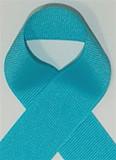Schiff Turquoise Grosgrain Ribbon
