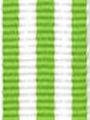Lime w/ White Stripe Ribbon
