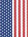American Flag Preppy Stripe Ribbon