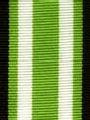 Navy and Lime Preppy Stripe Ribbon