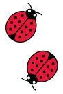 Ladybugs Grosgrain Ribbon