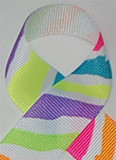 Multi Neon Zebra Printed Ribbon. Great for hair bows, cheer bows,craft ribbon and more