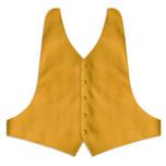Gold Backless Vest