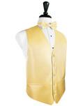 Buttercup Tuxedo Vest