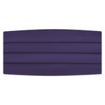Satin Lapis Purple Cummerbund