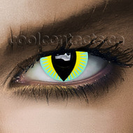Aqua Dragon Contact Lenses