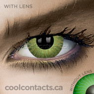 Light Brown Contact Lenses