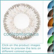 Light Grey Contact Lenses