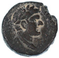 Agrippa II for Domitian AE