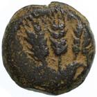 Agrippa AE Prutah