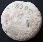 Jerusalem Herodian LARGE Stone Weight
