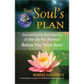 Your Soul's Plan (Book)