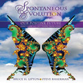 Spontaneous Evolution:  Our Positive Future and a Way to Get There From Here (CD)