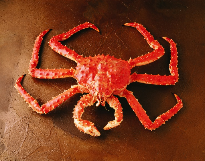 how to eat whole alaskan king crab