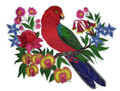 Australian King Parrot With Flowers