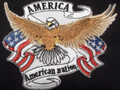 Eagle With American Banner