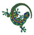 Caribbean Gecko