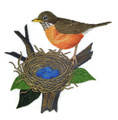 Robin and Nest