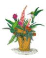 Flowering Basket Hummingbirds