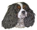 Cavalier King Charles Dog Face