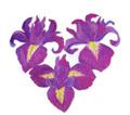 Heart Of Irises