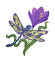 Dragonfly Spring