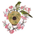 Japanese White-eye and Birdhouse