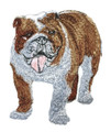 Bulldog -2