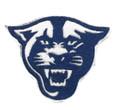 Georgia State Panther