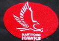 Hartford Hawks Logo Iron On Patch