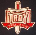 Troy Trojans logo Iron On Patch