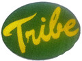 William And Mary Tribe Logo Iron On Patch