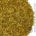 Cedar Leaf Tips, Port Orford (Lawson's Cypress)
