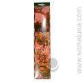 Xhisi Incense