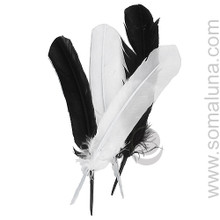 Black Large Smudging Feather