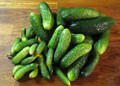 Parisian Pickling Cucumber Seeds