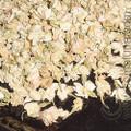Jasmine Flowers, whole