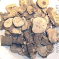 Mandrake Root (Mandragora)