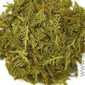 Cedar Leaf Tips, Eastern White