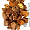 Kola Nut, whole