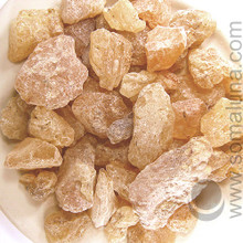 Copal, Sumatra Gold (Gold Damar)