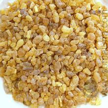 Frankincense, Arabian Sweet