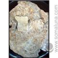 Asphaltum - Mineral Pitch, white