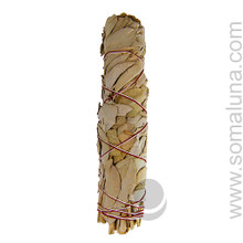 California White Sage Large Smudge Wand