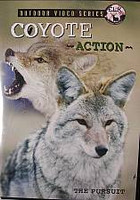 ELK Inc Coyote Action The Pursuit DVD