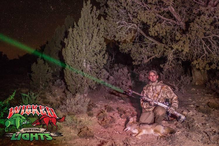 Wicked Hunting Lights W403IC
