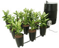 Active Aqua Grow Flow Controller & 2 Gallon Bucket Kit