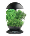 AeroGarden 3 Black w/Gourmet Herb Seed Kit